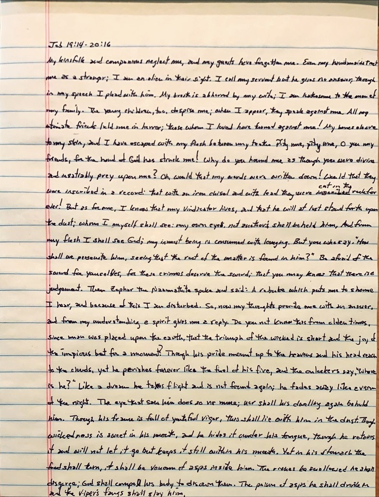 Handwritten page from the book of Job chapter 19 verse 14 through chapter 20 verse 16.