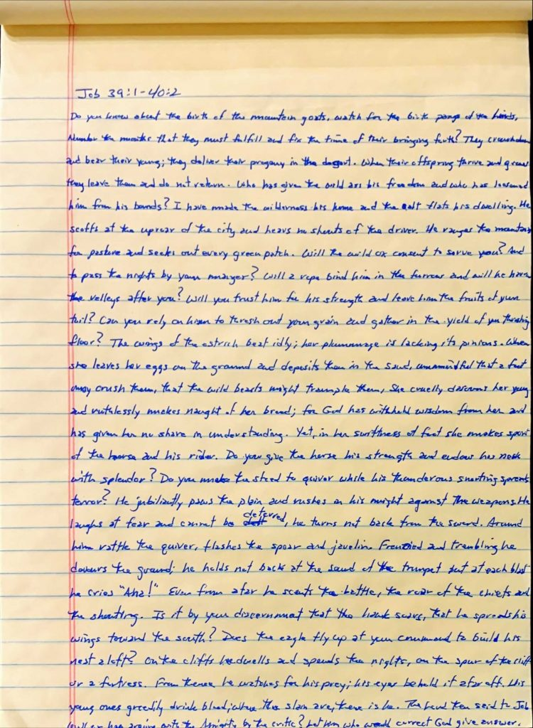 Handwritten page from the book of Job chapter 39 verse 1 through chapter 40 verse 2